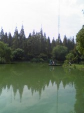 森林公園の湖